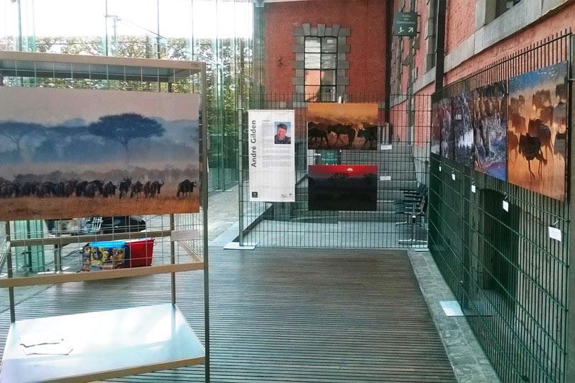 Exposition Namur